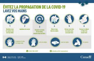 Évitez la propagation de la COVID-19 : Lavez vos mains (infographie)